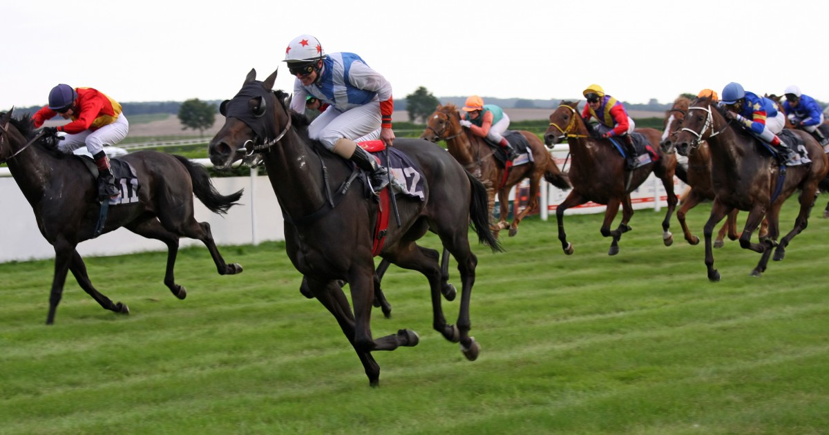 Coronation stakes 2021 betting trends bts meaning in betting