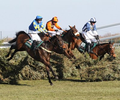 Auroras Encore, Oscar Time and Teaforthree in the 2013 Grand National