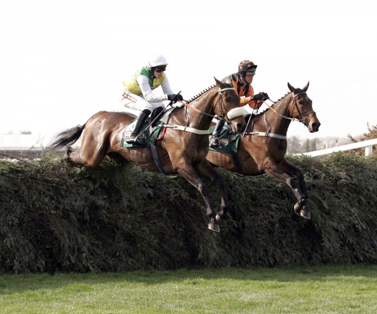 Ballabriggs and Killyglen in the 2011 Grand National
