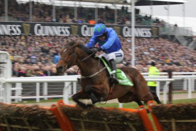 Hurricane Fly - Champion Hurdle