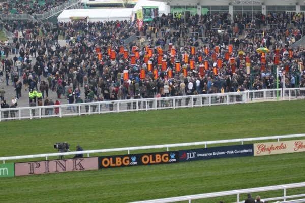 Cheltenham Day 3 Tips