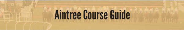 Aintree Course Guide